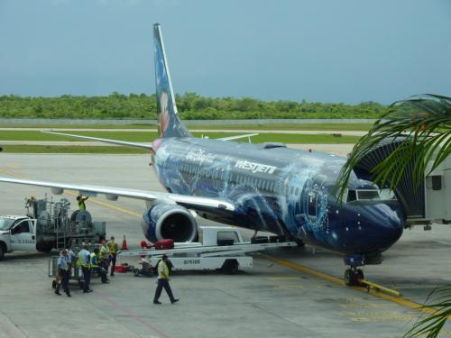 L'avion Boeing 737-800 (C-GWSZ), ici pris en photo à Varadero (Cuba). Il est en livrée publicitaire pour Walt Disney World Resort à Orlando (Floride - USA).